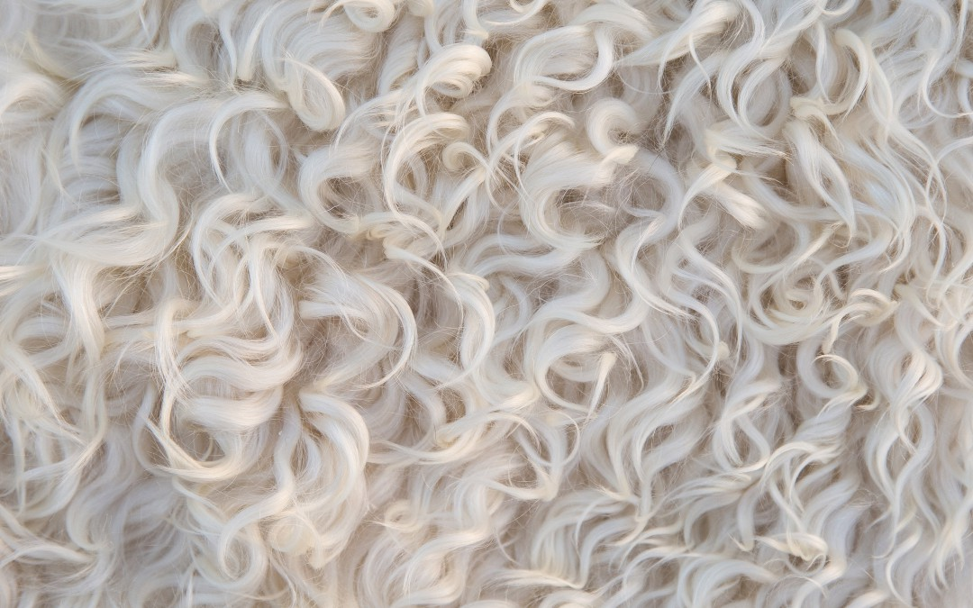 Hvite teksturer…